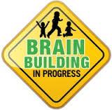Brain building in process